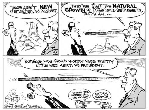 6-6-natural-growth-500x370